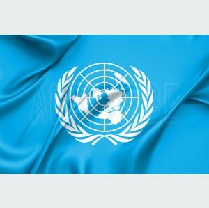 Bandera de ONU