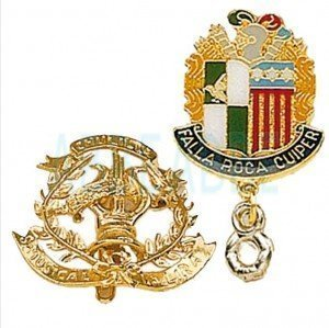 Insignias en Relieve o Fundidas