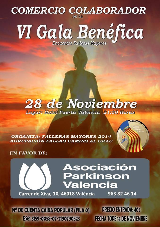 VI Gala Benéfica en beneficio de la Asociación Parkinson de Valencia