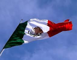 La bandera mexicana ya ondea en Sochi