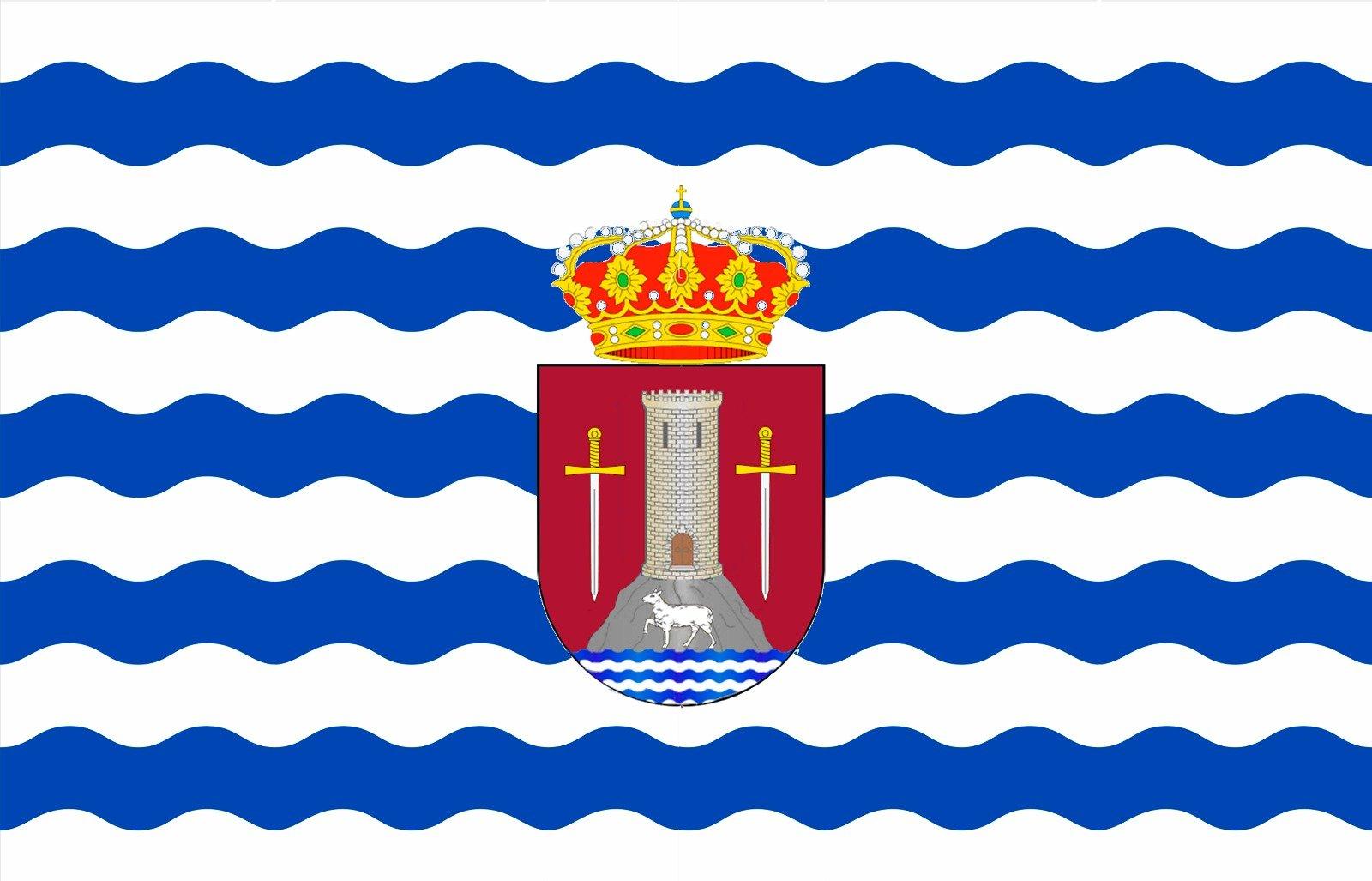 Nueva Bandera de Torrecaballeros
